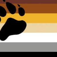 dia dos ursos